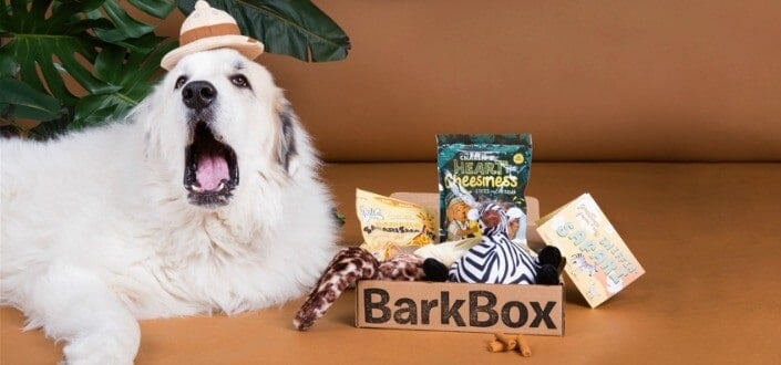 barkbox - dog size