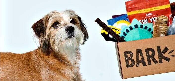 barkbox - items