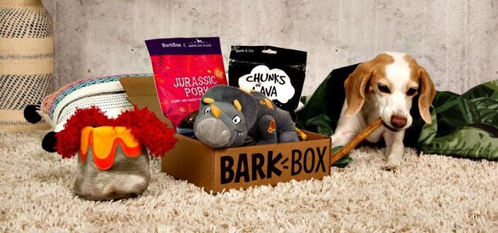barkbox reviews - review