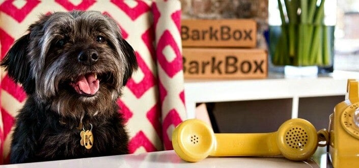 barkbox reviews - shipping