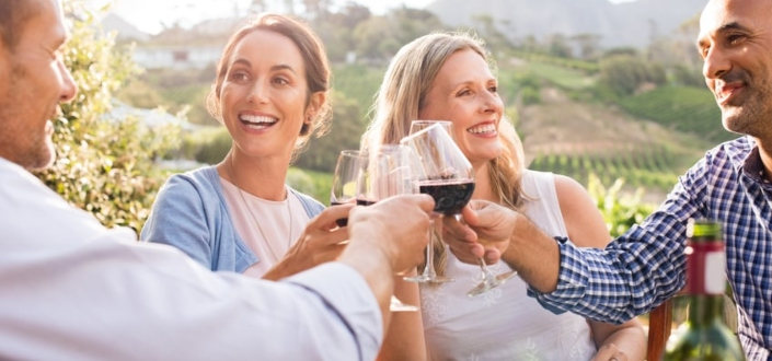 Vinesse Wine Clubs - Things to Love About Vinesse WInes