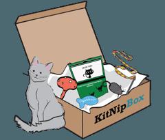 KitNipBox Price - Monthly Single Cat