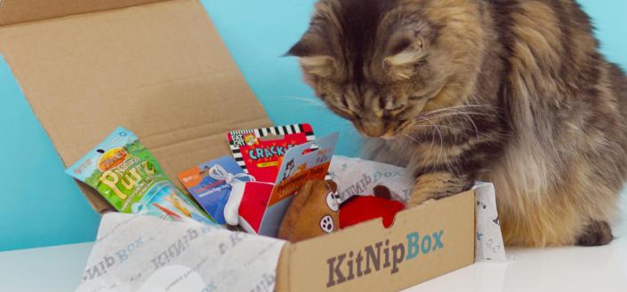KitNipBox - KitNipBox Shipping Breakdown