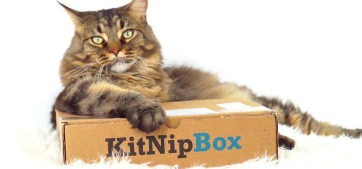KitNipBox - KitNipBox Review