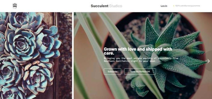 Succulent Studios - What is it?