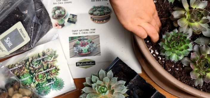 My Garden Box Review